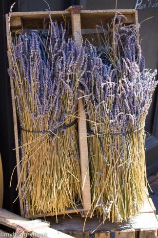 lavender (1 of 1)